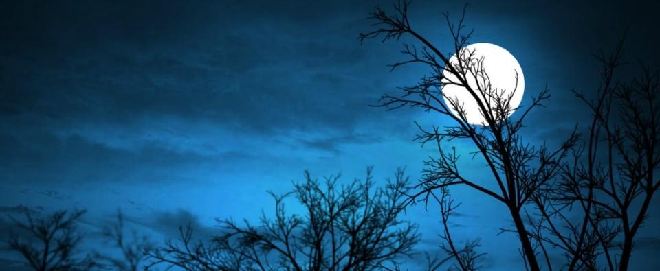 Moonlighting FTW